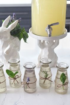 Homemade herb simple syrups. Tie fresh herbs around the corresponding syrups for identification.