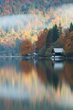 Lake house                                                                                                                                                                                 More