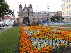Stettin, Polen med DenTour Rejser, Brama