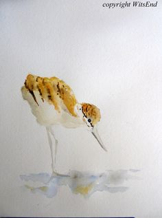 'A IS FOR AVOCET'. Shorebird watercolor painting baby bird Nursery art A by 4WitsEnd, via Etsy