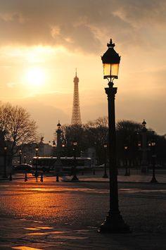 Paris y más París.. Paloma
