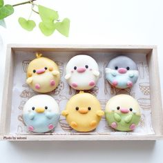 Creative pastry desserts, can give a fresh feeling to the Macaroons, Macaron Cookies, Delicious Donuts, Delicious Desserts, Yummy Food, Beaux Desserts, Cute Desserts, Cute Donuts, Cute Cookies