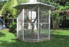 x All Weather Cat Chipmunk Bird Aviary Plus Porch Diy Bird Cage, Bird Cages, Large Parrot Cage, Bird Cage Covers, Flight Cage, Woodland Park Zoo, Bird Aviary, House Plants Decor, Secret Life Of Pets