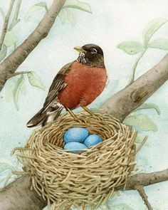 Items similar to Bird Tree with Robin - archival watercolor print by Tracy Lizotte on Etsy Bird Drawings, Animal Drawings, Watercolor Bird, Watercolor Paintings, Watercolor Portraits, Watercolor Landscape, Abstract Paintings, Art Paintings, Robin Bird