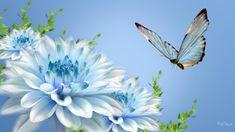 Nature Flowers Hd Wallpaper | All Desktop Wallpaper