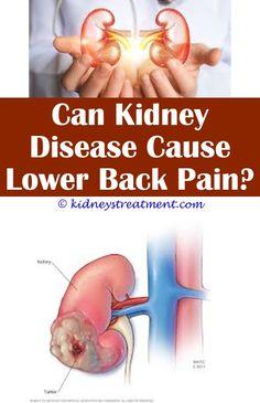 500 What Is Kidney Disease Ideas Kidney Disease Kidney Kidney Disease Symptoms