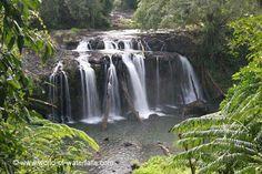 Wallicher Falls  Wooroonooran National Park, Queensland, Australia Queensland Australia, Cairns, Waterfalls, Deserts, National Parks, Beautiful Places, Desserts, Waterfall, Postres