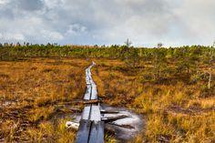 Valkmusa National Park, Finland | by PaiviSvanback