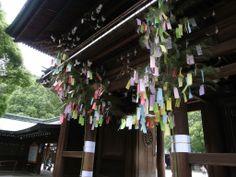 Meiji Jingu Shrine #Tokyo