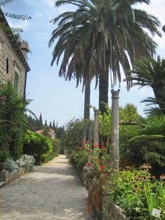 Trsteno Arboretum (near Dubrovnik)