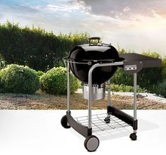Performer® Silver from Weber Grills and Accessories