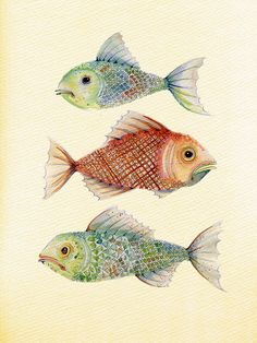Three Fish by Colleen Parker, via Flickr