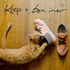 Justin Vernon & Keep's shoe for best friends animal society...by far my favorite Keep shoes