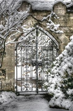 It is a winter wonderland in my secret garden and the snow is on the ground.