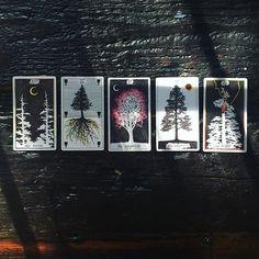 #treesofthetarot