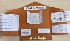 """Eulenblick mal!: Gastmaterial: Lapbook """"Vögel im Winter"""""""