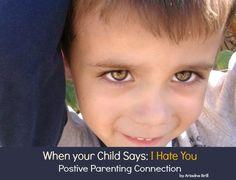 positive parenting connection