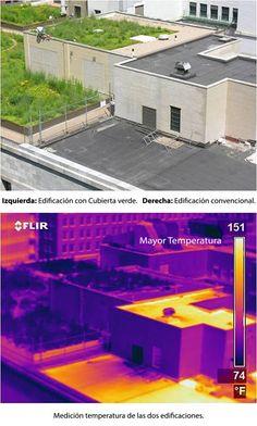 temperaturas en un techo verde