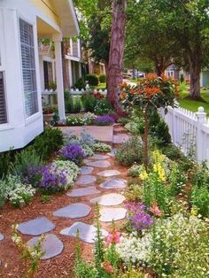 218 Best Low Maintenance Landscaping Ideas Images In 2019