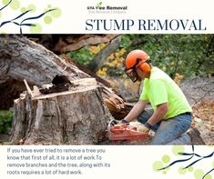 Once you get the easier parts done with tools you may have had to borrow or rent, the job is still not finished. Call at now. Stump Removal, Gta, The Borrowers, How To Remove, It Is Finished, Tools, Instruments, Appliance, Vehicles