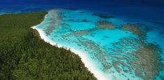 L Isola dei Pini