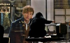 Here's a little magic to start your day — a brand new trailer has arrived for Fantastic Beasts and Where to Find Them.  The footage arrived Wednesday morning via The Ellen DeGeneres Show and gives the latest look at the Eddie Redmayne-starring spinoff to J.K. Rowling's beloved Harry Potter series.