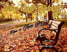 Blog Kesif Etkinligi Ekim ve Kasım Ayi
