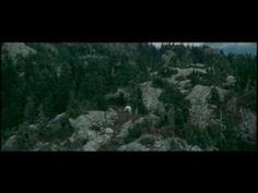 """canción oficial """"AMANECER""""  (YO TE DOY MI CORAZÓN) the twilight saga"""