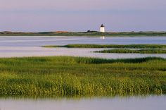 long point lighthouse and marsh