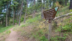 A spur trail leads to an old, shallow tunnel.- Best Hikes Near Spokane, Washington