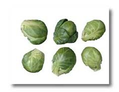 Brussels Sprouts:  lots of info including how to grow, preserve, and cook.