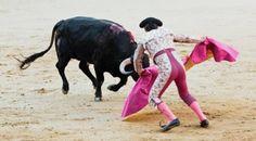 Defensoría plantea prohibir corridas de toros en el país