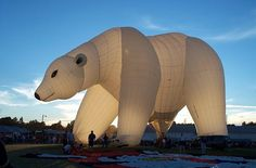 The Cool Hunter - Events - Unique Hot Air Ballooning Air Balloon Rides, Hot Air Balloon, Balloon Race, Air Ballon, Big Balloons, Photos Du, Kite, Bald Eagle, Cool Art