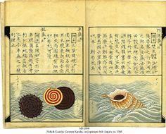 """Japanese fish - Opening 2 from """"Nittoh Guiofu: Gensen Kanda"""", ca. 1760"""