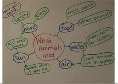 A simple concept map of what animals need to survive