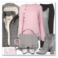 """Pink n' Grey"" by gracecar3 on Polyvore featuring Lafayette 148 New York, Hollister Co., Kain, Altuzarra, Gianvito Rossi, Casetify and Charlotte Russe"