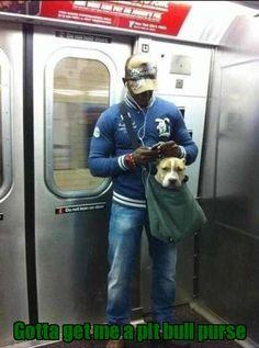 Gotta get me a pit bull purse
