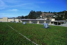 California's Korematsu Middle School now sports the state's largest LiveRoof green roof — a win-win-win for the school, students and the community. Garden Jacuzzi Ideas, Contemporary Sheds, Green Roof Benefits, Green Roof System, Urban Heat Island, Steel Roofing, Roofing Shingles, Roof Lantern, Modern Roofing
