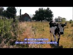 Genetic Roulette—The Gamble of Our Lives - Spanish Subtitles