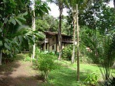 Fantástico Lote De 4000M2 Com Casa Ecológica - Excelente área com casa construída de forma sustentável, localizada em perfeita posição próxima ao centro de Trancoso.