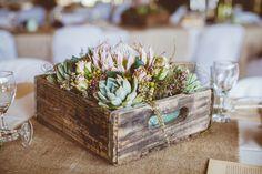 protea la flor de tu boda (14)