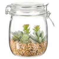 Plantes Grasses Artificielles Avec Bocal En Verre Avec Images