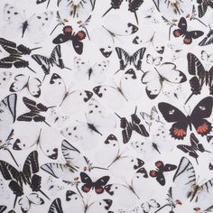 Black/White Butterflies Digitally Printed Stretch Neoprene/Scuba Knit