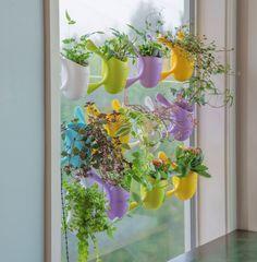 Garden Trends Livi Pot Collection   National Garden Bureau Garden Tools,  Herb Garden, Garden