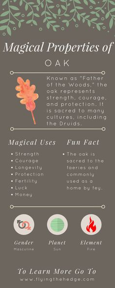 Magical Properties of Oak