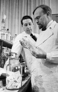 Aleksandr Oparin and Andrei Kursanov in enzymology laboratory 1938b - 알렉산드르 오파린 - 위키백과, 우리 모두의 백과사전 Criminal Law, The Past