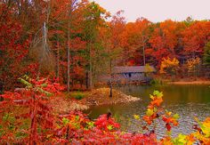 Green Mountain Nature Trail, Huntsville Al