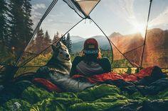 "The best companion to go on adventures with!  /  Loki the Wolfdog / via UNILAD Adventure /    <a href=""http://theadventurouslife4us.tumblr.com"" rel=""nofollow"" target=""_blank"">theadventurouslif...</a> Say Yes To Adventure"