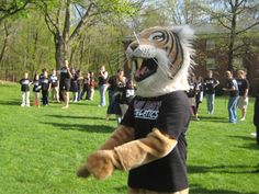 Massachusetts College Of Art And Design Mascot