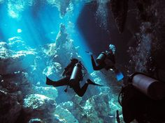 Cenote diving in Mexico!!